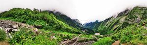 A Mesmerising Journey to the Sublime Valley of Flowers & Hemkund Sahib