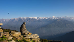 Escape to Chandrakhani(One of the shortest and best Treks in Himachal) #chandrakhani#manali#mountain