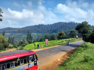 A gem nestled in the Nilgiri Hills - Ooty .Lush green forest,pristine lakes.