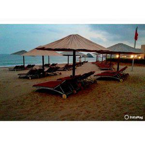 Miramar Al Aqah Beach Resort 1/1 by Tripoto