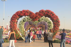 Dubai Miracle Garden 1/undefined by Tripoto