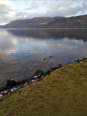 Few hours if not 100 days of solitiude around Lochness..