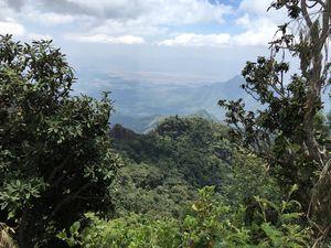 3 Days in Kodaikanal - In Cradle of Nature