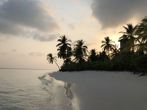 Lakshadweep, India's answer to Maldives!