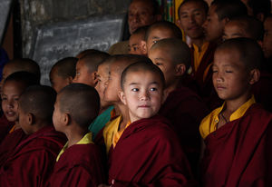 Novice monk #BestTravelPictures