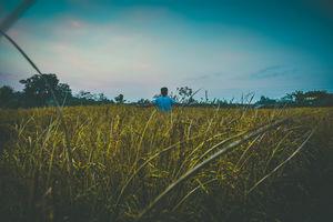 Glimpse Of Assam #northeastphotos