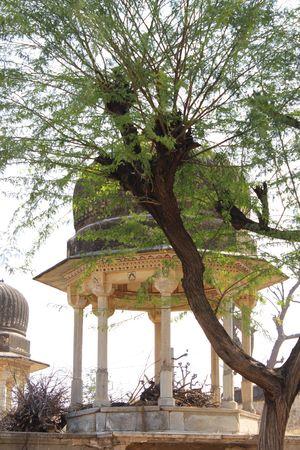 Mandawa:Charm of Shekhawati