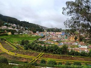 Tales from Ooty (Ootacamund)