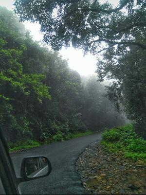 Misty roads of kodachadri