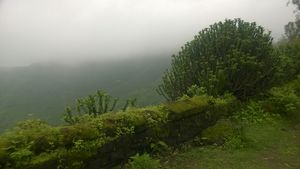 Trekking in clouds - Purandar Fort