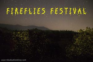Witness magical fireflies festival in Bhandardara: A weekend getaway near Mumbai