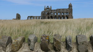 Whitby Abbey 1/undefined by Tripoto