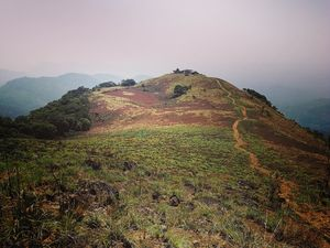 What you need to know about trekking in god's own country:PAITHALAMALA TREK