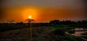 Evening sunset be like.