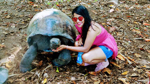 A Day In Curieuse Island #landoftortoises
