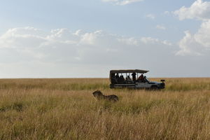 Best of Kenya Safari-8 Day Itinerary