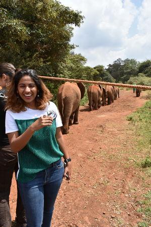 David Sheldrick Elephant & Rhino Orphanage 1/undefined by Tripoto