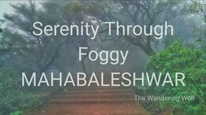 Serenity Through Foggy Mahabaleshwar