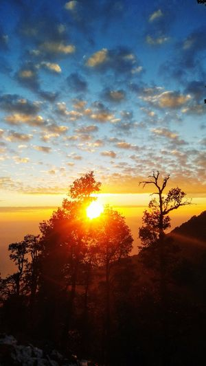 Nature welcomes you at the top of triund hill.