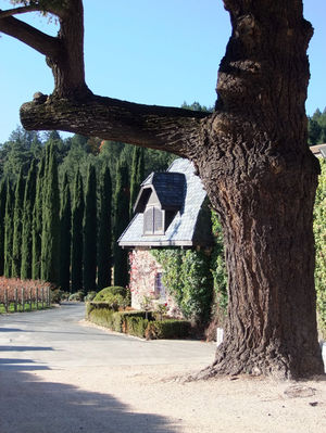 Chateau Boswell Winery 1/1 by Tripoto