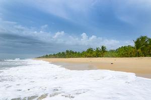 Marari Beach 1/undefined by Tripoto