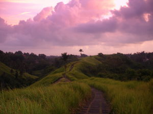 Campuhan Ridge Walk 1/undefined by Tripoto