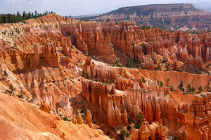 Bryce Canyon 1/undefined by Tripoto
