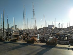 Top 5 Things to Do in Barcelona
