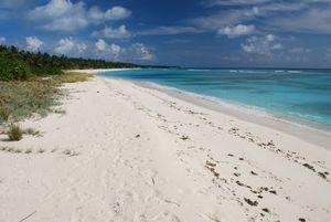 Kadmat Beach Resort 1/undefined by Tripoto