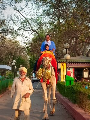 Enjoying camel ride by a handicap person at Chandigarh