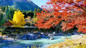 Photo Blog..Autumn of a Lifetime....in Spectacular Japan !!!!