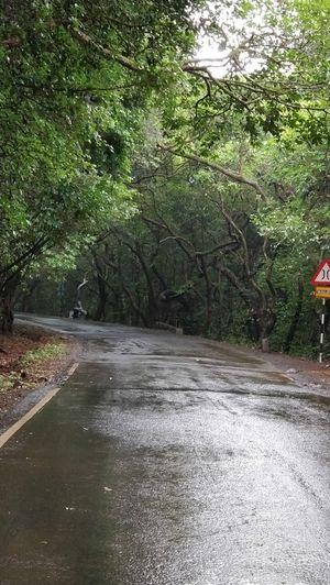 Trip to Mahabaleshwar, Panchgani & Pune