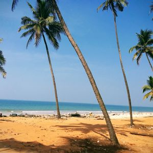 Beachify....this beach gives you the perfect veiw and small joints for great food..must try toddy...