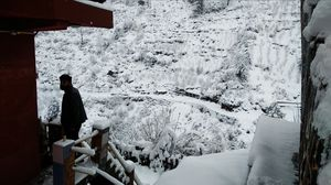 Tosh- Winter Wonderland