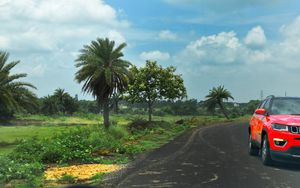 The grasslands of Asansol, West Bengal