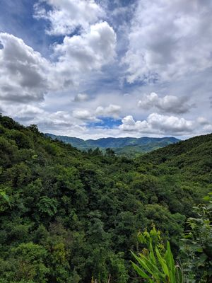 Hiking in the rainforest of Manipur