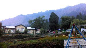 Shervani Hilltop 1/undefined by Tripoto