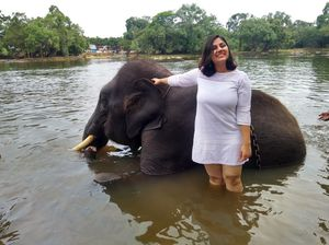 Hopping with elephants in COORG: A Backpacker's guide