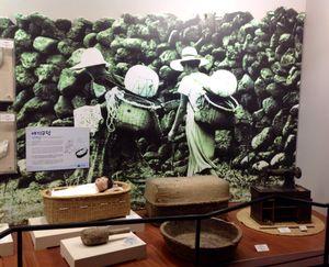 Jeju Haenyeo Museum 1/1 by Tripoto