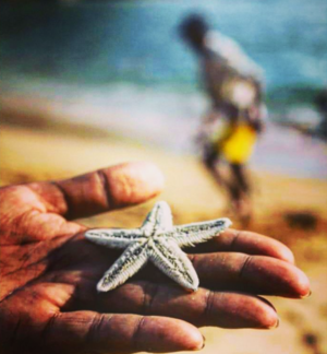 Not all STARS belong to the sky!! Be a responsible Traveller. #SaveOurOceans #BestTravelPictures