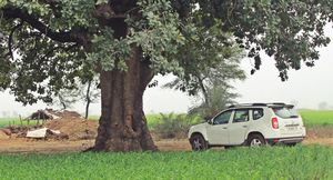 Into the wild: Madhya Pradesh (Aron)