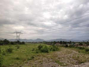 Dehradun - Almora : Morning Scenes @ Haridwar 14/08/19