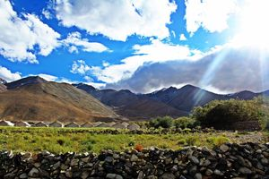 Ladakh Diaries - JULLEY