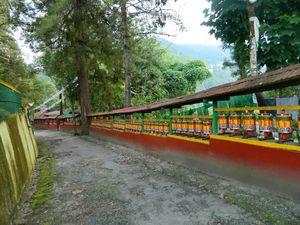 Enchey Monastery 1/8 by Tripoto