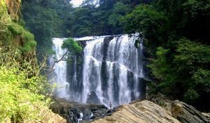 Dandeli - The Ultimate Guide for Real Travelers