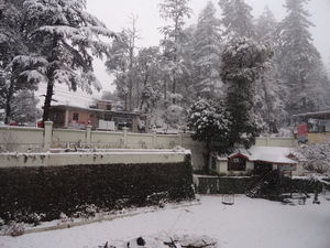 Snow-capped Shimla