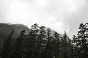 Kasol // a journey within // solo trip