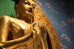 Bodhgaya // The land of Buddha // PART 1