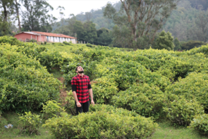 Ooty // The Tea Hill Station //