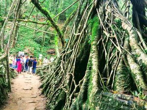 India's wettest and Greenest place#Shillong#cherrapunjee#maysynram